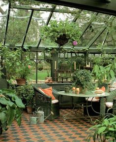 Dreaming of green houses and the plants that reside within them.