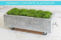 Make a Modern, Trough-Style Concrete Planter - foam boards for a mold, drain spout for drainage, and casters for easy moving. Genius.