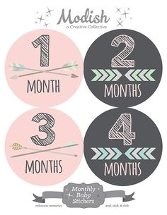 FREE GIFT, Baby Girl Tribal Month Stickers, Arrow Month Stickers Girl, Monthly Baby Stickers Girl, Arrows, Chevron, Tribal, Pink, Gray, Grey