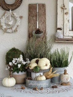 White pumpkins, galvanized containers and plants. Lovely for early Autumn. White pumpkins, galvanized containers and plants. Lovely for early Autumn. White Pumpkins, Painted Pumpkins, Fall Home Decor, Autumn Home, Early Autumn, Diy Autumn, Autumn Garden, Deco Champetre, Pumpkin Flower
