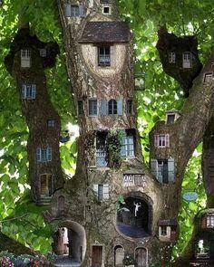 Wonderful Fairy Garden Trees Miniature Fairy Garden Tree House Skip to full craft Fairy Tree Houses, Cool Tree Houses, Fairy Garden Houses, Garden Art, Fairy Village, Fairy Gardens, Garden Ideas, Fairies Garden, Garden Junk