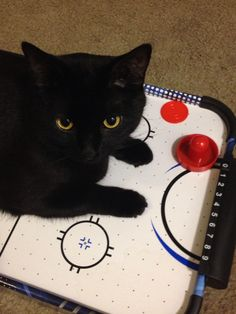 My Black Cat (C.K. Dexter) likes air Hockey too