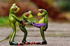 Free Image on Pixabay - Frogs, Curious, Funny, Figures Funny Frogs, Cute Frogs, Animals And Pets, Funny Animals, Frog Wallpaper, Mother Daughter Matching Outfits, Muppet Babies, Frog Art, Frog And Toad
