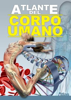 Corpo umano Scienze - scuola primaria