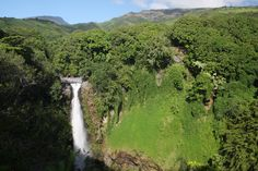 Pipiwai Trail, Haleakala National Park, Hawaii - 4 mile loop through fresh water, forest and waterfall.
