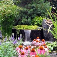 Water Garden Design, Garden Ponds, Pond Waterfalls, Koi Fish Ponds
