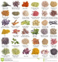 Photo about Spices set with a great assortment isolated on a white background and with their scientific names and their names in English, Spanish and French. Image of cumin, allspice, dill - 50568271 Indian Spices List, List Of Spices, Spices And Herbs, Spice Blends, Spice Mixes, Names Of Spices, Spice Image, Food Vocabulary, Spice Set
