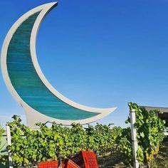 "Thessaloniki Travel on Instagram: ""Harvest by the moon 🌙 📸@ktima_gerovassiliou 🍇 . . . #harvest2020 #VisitGreece #VisitThessaloniki…"" Thessaloniki, Harvest, Lovers, Moon, Wine, Outdoor Decor, Travel, Instagram, Home Decor"