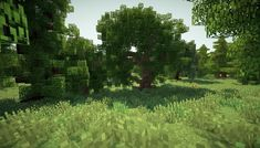 Minecraft Trees - Minecraft World Minecraft Tree, Minecraft Medieval, How To Play Minecraft, Minecraft Buildings, Minecraft Ideas, Thumbnail Background, Minecraft Shaders, Mojang Minecraft, Bubble House