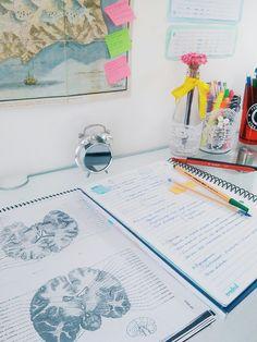 school // studying // focus // study tips