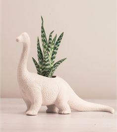 Vous avez la main verte et vous adoré les dinosaures ? Ce pot en forme de dino va vous permettre de faire pousser toutes vos plantes grasses qui ont besoin d'humidité ! Le Plantosarus va tout faire pour sublimer vos plantes.