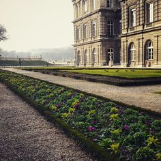 Jardin du Luxembourg 🌳🌲💚 Paris.