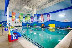 Get safe swim lessons from our certified instructors at Aqua-Tots swim school in Olathe, KS. Enroll your child today and experience the Aqua-Tots difference. Swimming Pool Plan, Kid Pool, Indoor Swimming, Swim Lessons, Life Lessons, Swim Safe, Swim School, Coloring For Kids, School Design