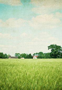 pretty farm with blue sky & white clouds