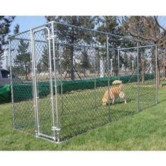 Barkshire Galvanised 2 in 1 Dog Run – or – Dog Kennel Dog Cage Outdoor, Outdoor Dog Runs, Puppy Pens, Pens For Sale, Great Run, Dog Cages, Chicken Runs, Two Dogs, Happy Dogs