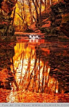 Orange fall lake Round and Round Eddy Pewit's Nest near Devils Lake State Park Wisconsin in Fall by Matt Anderson Photography Scenic Landscape Beautiful World, Beautiful Images, Beautiful Beautiful, Wisconsin State Parks, Wisconsin Cabins, Wisconsin Dells, Matt Anderson, Foto Top, All Nature