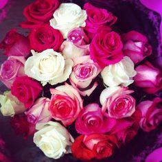 Beautiful roses <3