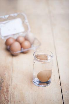 Sem ovo, não se vai muito longe na cozinha. É claro que tem gente que não come nada de origem animal, mas aqui, e em tantas cozinhas do mundo, ele é ingrediente de primeira necessidade. Se você é da turma do ovo (a gente é!), abra um sorriso: a semana no Pitadas é dedicada a ele.