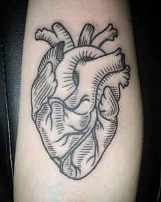 anatomicalheart lineworktattoo illustration hearttattoo thebutcher stephanie linework heart line work for Line work heart for Stephanie You can find Heart tattoo and more on our website Red Heart Tattoos, Mini Tattoos, Design Tattoo, Heart Tattoo Designs, Sister Tattoos, Tattoos For Guys, Anatomical Heart Drawing, Anatomical Heart Tattoos, Tattoo Ideas