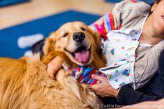 Foto do calendário do Instituto Cão Terapeuta