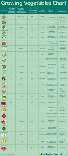 Growing Vegetables Chart -
