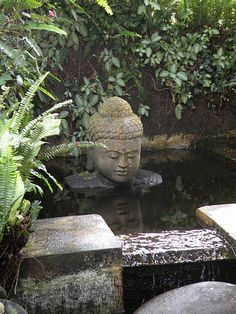 Balinese pond feature | Tropical and exotic landscaping ideas and water features