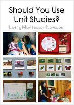 Should You Use Unit Studies | Deb Chitwood | Flickr