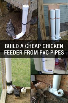 I like the bottom right one.   How to Build A Cheap Chicken Feeder From PVC Pipes: http://www.mychickencoop.net/build-cheap-chicken-feeder-pvc-pipes/