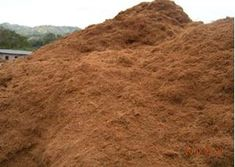 Picture of Coco Peat