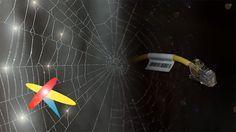 KABEL SIECIOWY LAN PRO ETHERNET - połącz się ze światem.