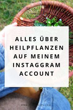 Ich arbeite seit vielen Jahren mit Heilpflanzen und auf meinem Instagram-Account teile ich meine Erfahrungen, Pflanzenwissen und Rezepte für Salben oder andere Schätze zum Nachmachen. Komm mal vorbei geguckt :-) Liebe Grüße, Ruby #heilkräuter #heilpflanzen #hausmittel #tipps #hausapotheke #Kräuterwissen Kraut, Superfood, Profile, Hacks, Photo And Video, Instagram, Herbal Medicine, Sore Muscles, Reduce Stress
