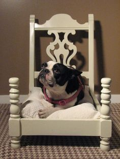Upcycle chair into dog bed or cat bed