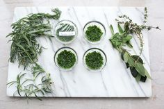 No more wilting, wasted herbs! Learn how to preserve herbs with these 5 simple methods and have pre-made, fast flavor at your fingertips.
