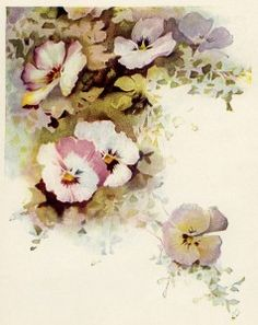 pansy illustration, cluster of flowers, free vintage floral image, flowers clipart, antique floral graphic