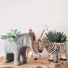 #planters #pots #pottery