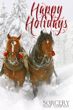 Happy Holidays from Sorcery Soap Company!