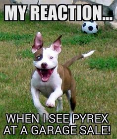 My reaction when I see Pyrex at a garage sale!