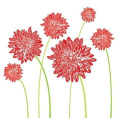 Dahlia flowers, blossoms, blooms, big, red, crimson, green, stems, garden, art, graphic, design, illustration. By Shalom Schultz Designs.