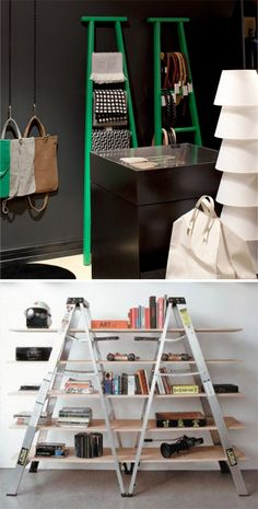 The Shelf Life | Rena Tom