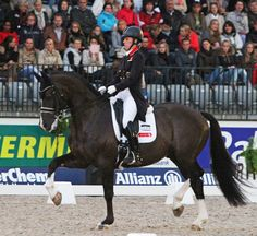 Charlotte Dujardin and Valegro completing their first Freestyle in six months to win the Rotterdam CDIO5*. © 2013 Ken Braddick/dressage-news.com