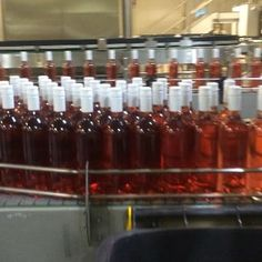 Guess what's being bottled... #mountriley #thebonnierose #rose #limitedrelease