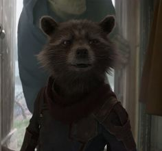 Rocket Raccoon, Racoon, Marvel Dc Comics, Marvel Avengers, Peter Quill, Alien Creatures, Spideypool, Guardians Of The Galaxy, Outer Space