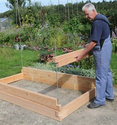 Latest Absolutely Free Raised Garden Beds corner Tips Sure, which is a bizarre headline. However yes, any time I first designed my raised garden beds My partner and. Veg Garden, Garden Boxes, Garden Planters, Succulents Garden, Garden Path, Raised Garden Beds, Raised Beds, Outdoor Projects, Garden Projects