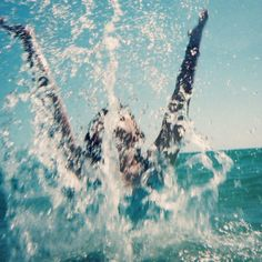 Splash- tumblr