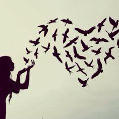 Loves doves.