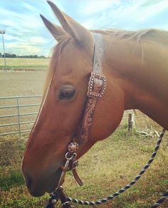 Happy customer in his custom ordered belt headstall | Heart Of Golde Custom Taxk