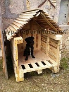 Pallet Dog House, Build A Dog House, Dog House Plans, Palette Deco, Cool Dog Houses, Pet Dogs, Pets, Dog Runs, Outdoor Dog