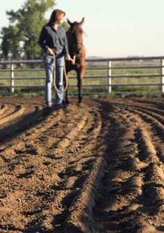 """Horse Arena Footing - a good """"BASE""""for drainage would be a limestone screening, but it has a tendency to compact to a concrete-like hardness.  It offers excellent traction & drainage"""