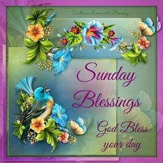 Wishing you a beautiful Sunday Happy Sunday Morning, Sunday Greetings, Sunday Pictures, Encouraging Thoughts, Positive Thoughts, Happy Week, Happy Monday, Blessed Friday, Biblia Online