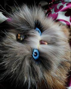 Anna Magic Owl Flower (@magic.owl) в Instagram: «Совушка Ману (Мануша)  игрушка ручной работы сова мех лисы, шерсть, полимерная глина…»